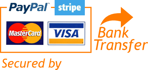 payment methods that iDig 3D printing accept